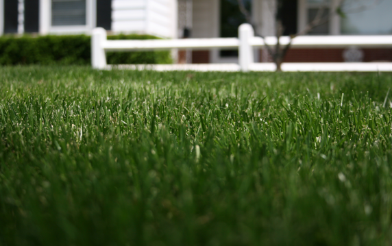 Martz Bros. - Lawn care in the Kansas City area